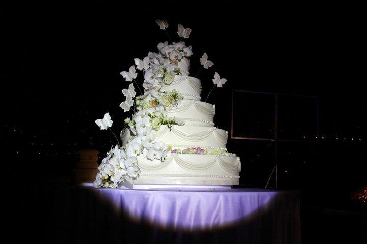 Matrimonio Natalizio Enzo Miccio : Bufera sulla moda del cake design dopo il servizio di